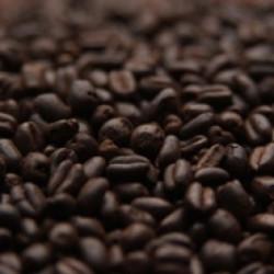 Chokolade hvede