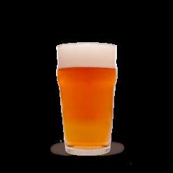 US Pale Ale 20 liter - Allgrain sæt