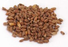 Wheat Crystal malt