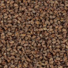 Wheat Munich malt