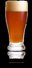 IPA 20 liter - Allgrain sæt
